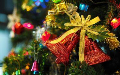 CLDC December Newsletter